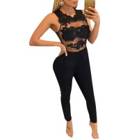 Women Sleeveless Mesh Transparent Black Lace Jumpsuit Dress WC-145BK