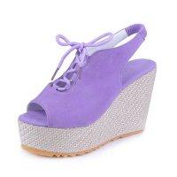 Stylish Waterproof Women Slope High Heeled Wedge Sandal Shoes S-104PL