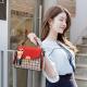 New Fashion Small Square Cross Border Ladies Shoulder Bag WB-43RD image