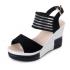 Women Korean Fashion Black High Wedge Sandals S-41BK