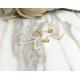 Woman Fashion Triangle Star Female Earrings  E-04G