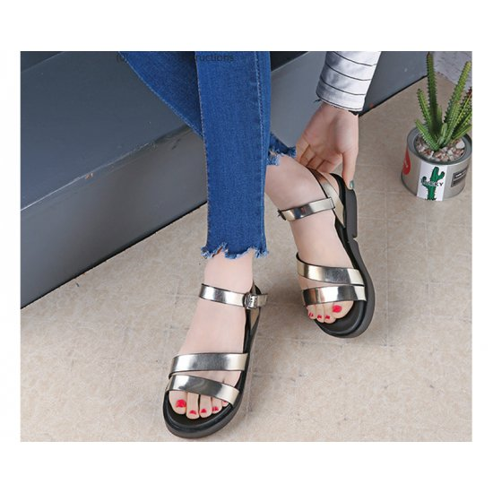 Silver Color Summer Thick Open Toe Womens Sandals S-62 image